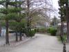 公園の小道