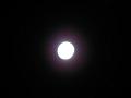名月。でも露光が……2