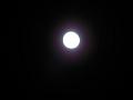 名月。でも露光が……3