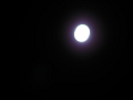 名月。でも露光が……それに手ぶれが……1