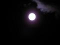 名月。でも露光が……6