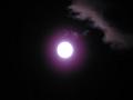 名月。でも露光が……7