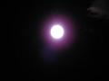 名月。でも露光が……8
