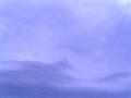 馬? 龍? 雲。