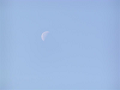 朝に見る月
