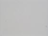 ぼた雪が落ちてくる