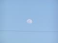 電線の上の月