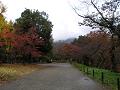 太郎山は雲の向こう