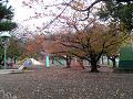 秋の児童公園