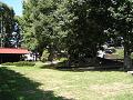 信濃国分寺 木の下のベンチ