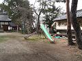 神社境内の滑り台
