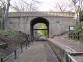 けやき並木遊歩道 二の丸橋下を見通す
