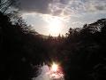桜咲くお堀に沈み行く夕日