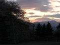 石垣の向こう、桜の影に落ちる夕日