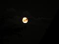 月齢16.3 十六夜群雲