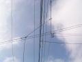 絡み合う電線