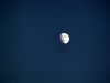 2008年10月11日 後の月(十三夜の月)