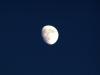 2008年10月11日 栗名月(十三夜の月)
