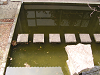 飛び石のある池