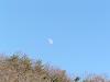山の上の月