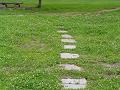白詰草の中の飛び石