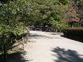 初秋の小道