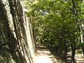 石垣の脇の細い道