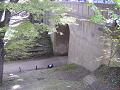 二の丸橋とけやき並木遊歩道