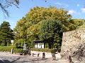 上田公園駐車場入り口 黄葉始まる