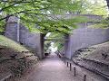 けやき並木遊歩道 二の丸橋