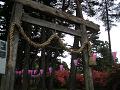 御屋敷公園 皇大神社の鳥居