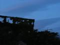 蔦に覆われた屋上(夜)