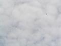[ピンぼけ/手ぶれ有り]雲の中を行く、白い風船