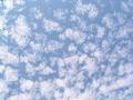 鱗雲(巻積雲)