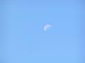 午前10時頃の月