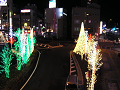 街路樹がイルミネーションに彩られた、ロータリー周回道路