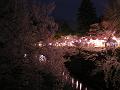夜桜夜店2