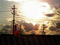 秋の夕暮れ、 電線の向こうの夕日