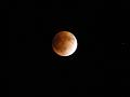 2011年12月10日の夜。