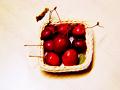 加工済み写真「原種りんご:上から見下ろすアングル」