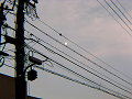 電線の間の月
