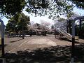 春の日の児童公園(視線の高さ:子供)