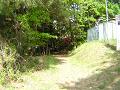古びたフェンスの脇、森の中へ続く道。