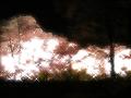夜桜(水彩風・キラキラ・夢)
