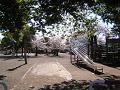 春の日の児童公園(視線の高さ:大人)
