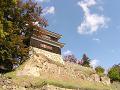 尼が淵から上田城の南櫓を見上げる「よ」