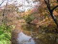 紅葉を映しこむ堀