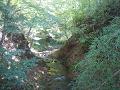 鹿教湯温泉:谷間のせせらぎ(内村川)