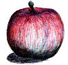 リンゴ(フジ)ハーフトーン加工 背景透過
