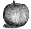 リンゴ(フジ)モノトーン(グレースケール) 背景透過
